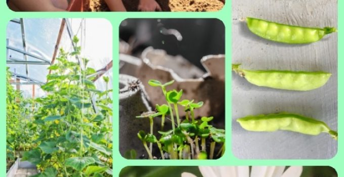 Bring Nature To You With These Horticulture Tips