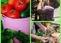 How Organic Gardening, Vegetable Gardening Can Help You Thrive And Survive