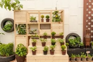 Gardening Without Chemicals: Everything You Need To Know About Organic Gardening