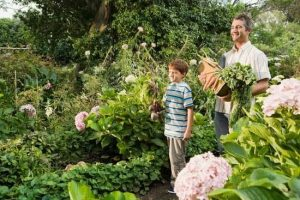 Grow A Safer Garden By Using These Organic Gardening Tips