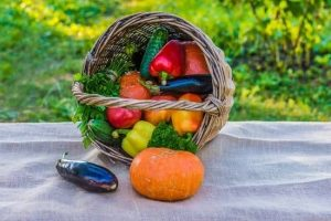 How Organic Gardening Can Help You Thrive And Survive