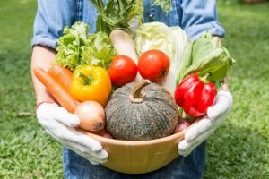 How To Succeed With Your Own Organic Garden