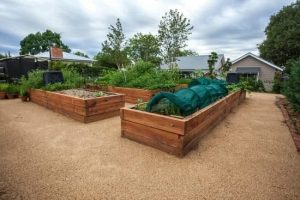Simple Organic Gardening Tips That Anyone Can Try