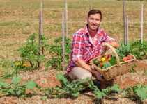 Things That Can Help You With Organic Gardening