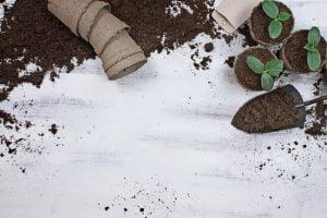 Tips On Organic Gardening For New Gardeners