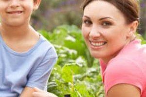 Advantages of Vertical Gardening Vegetables